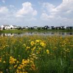 6Clear_pond_Illinois