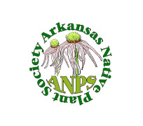 Arkansas-Native-Plant-Society