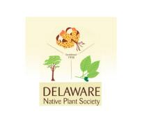 Delaware-Native-Plant
