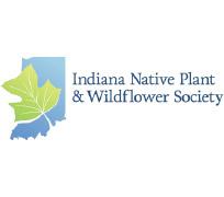 Indiana-Native-Plant