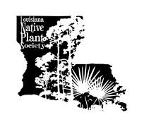 Louisana-Native-Plant