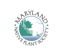 MD-Native-Plant