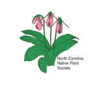 NC-Native-Plant