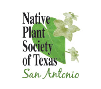 Native-Plant-Texas