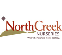 North-Creek