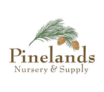 Pinelands